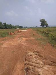2000 sqft, Plot in Builder Project Jamujhari, Bhubaneswar at Rs. 10.6000 Lacs