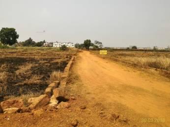 1800 sqft, Plot in Builder Project Janla, Bhubaneswar at Rs. 11.0000 Lacs