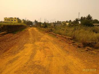 1500 sqft, Plot in Builder Near Gita Gandhi College Tamando, Bhubaneswar at Rs. 9.8000 Lacs