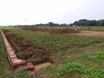1500 sqft, Plot in Builder Project Dhauli, Bhubaneswar at Rs. 7.5000 Lacs