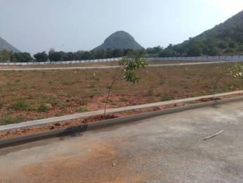 1647 sqft, Plot in Bhoomatha Amaravati Green City Modavalasa, Visakhapatnam at Rs. 13.7500 Lacs
