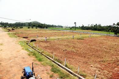 540 sqft, Plot in Bhoomatha Padmanabha Green Valley Tarluvada, Visakhapatnam at Rs. 5.0000 Lacs