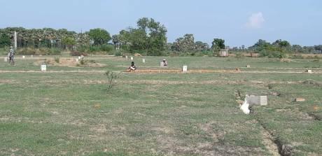 1000 sqft, Plot in Simhastha Constructions Narayan Apna Basera Naubatpur Bikram Road, Patna at Rs. 5.0100 Lacs