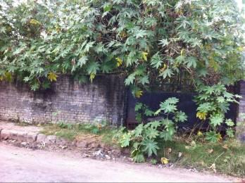 8100 sqft, Plot in Builder Project Sahastradhara Road, Dehradun at Rs. 2.8800 Cr