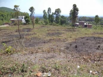 4500 sqft, Plot in Builder Project Sahastradhara Road, Dehradun at Rs. 1.3000 Cr
