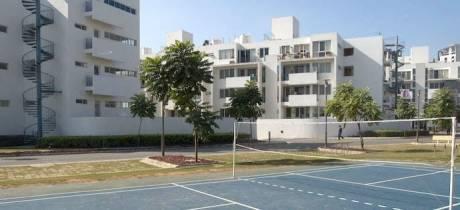 1620 sqft, 3 bhk Apartment in CHD Avenue 71 Sector 71, Gurgaon at Rs. 21000
