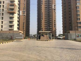 2538 sqft, 3 bhk Apartment in Builder Pioneer Park Apartment Sector 61 Gurgaon Sector 61, Gurgaon at Rs. 35000
