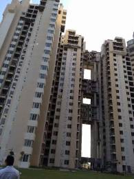 959 sqft, 2 bhk Apartment in Urbtech Xaviers Sector 168, Noida at Rs. 47.5000 Lacs