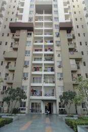 1343 sqft, 2 bhk Apartment in 3C Lotus Boulevard Sector 100, Noida at Rs. 70.0000 Lacs