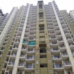 955 sqft, 2 bhk Apartment in Trident Embassy Sector 1 Noida Extension, Greater Noida at Rs. 34.3800 Lacs