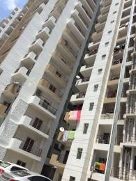 1400 sqft, 3 bhk Apartment in Express Zenith Sector 77, Noida at Rs. 72.8000 Lacs