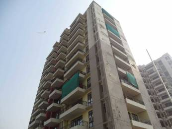 1850 sqft, 4 bhk Apartment in Builder The Mart Apartments Sector 2, Faridabad at Rs. 90.0000 Lacs
