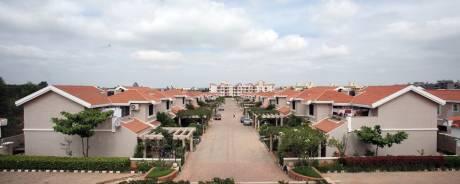 3700 sqft, 4 bhk Villa in Sobha City Aristos Kannur on Thanisandra Main Road, Bangalore at Rs. 1.4000 Lacs