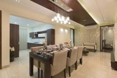 2495 sqft, 4 bhk Apartment in Builder exotic Dhakoli Zirakpur, Chandigarh at Rs. 95.8000 Lacs