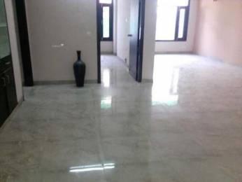 1150 sqft, 2 bhk Apartment in Jaypee Klassic Heights Sector 134, Noida at Rs. 10000