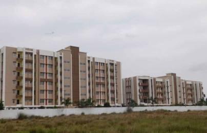 560 sqft, 1 bhk Apartment in Sequel The Swan Regale Bata Mangala, Puri at Rs. 15.1200 Lacs