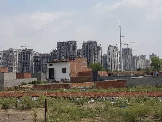 1350 sqft, Plot in Saha Amadeus Sector 143, Noida at Rs. 15.0000 Lacs