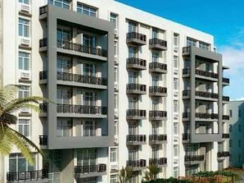 1577 sqft, 3 bhk Apartment in Builder Project Aerocity, Mohali at Rs. 52.7600 Lacs