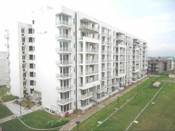 1609 sqft, 3 bhk Apartment in Ireo Rise Sector 99 Mohali, Mohali at Rs. 15000