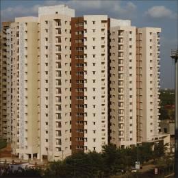 1427 sqft, 2 bhk Apartment in Adani Elysium Near Vaishno Devi Circle On SG Highway, Ahmedabad at Rs. 55.0000 Lacs