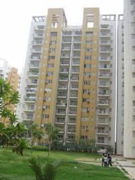2032 sqft, 3 bhk Apartment in BPTP Park Grandeura Sector 82, Faridabad at Rs. 17000