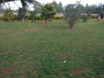 2400 sqft, Plot in Srinivasa Green Acres Phase 2 Marsur, Bangalore at Rs. 40.0000 Lacs