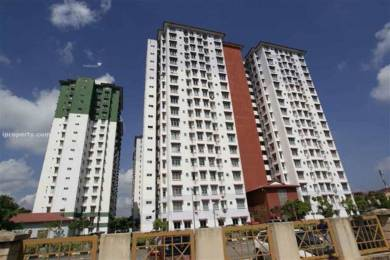 1230 sqft, 3 bhk Apartment in Builder Project Faizabad road, Lucknow at Rs. 27.0000 Lacs