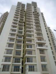 1325 sqft, 2 bhk Apartment in GM Daffodils Jalahalli, Bangalore at Rs. 65.0000 Lacs