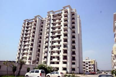 1150 sqft, 3 bhk Apartment in NK Savitry Greens 2 VIP Rd, Zirakpur at Rs. 32.0000 Lacs