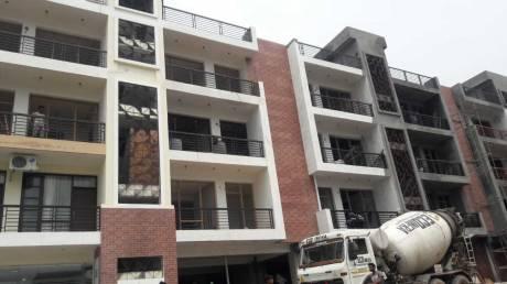 1368 sqft, 3 bhk BuilderFloor in Builder OASIS GREEN Dhakoli, Zirakpur at Rs. 37.6500 Lacs