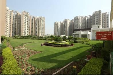 1600 sqft, 3 bhk Apartment in Bliss Orra Gazipur, Zirakpur at Rs. 54.7000 Lacs