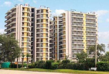 1250 sqft, 2 bhk Apartment in Trishla City Bhabat, Zirakpur at Rs. 46.7500 Lacs