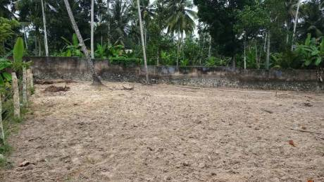 1742 sqft, Plot in Builder Project Nemom, Trivandrum at Rs. 6.0000 Lacs
