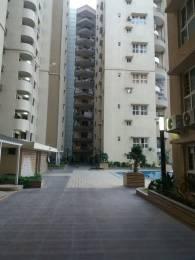 1750 sqft, 3 bhk Apartment in Builder Sri Vari Alka Plazo Kattupakkam, Chennai at Rs. 35000