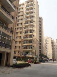 1174 sqft, 2 bhk Apartment in Omaxe Residency Phase 1 gomti nagar extension, Lucknow at Rs. 12000