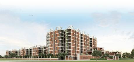 507 sqft, 1 bhk Apartment in Arete Our Homes 3 Sector 6 Sohna, Gurgaon at Rs. 13.0513 Lacs