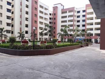 1196 sqft, 3 bhk Apartment in Builder gokuldham Raipura Chowk Road, Raipur at Rs. 33.5325 Lacs