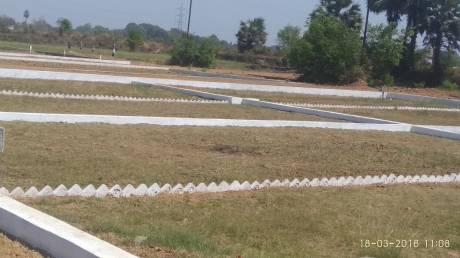 1000 sqft, Plot in Builder Project Tajganj, Agra at Rs. 8.0000 Lacs