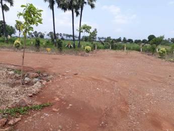 900 sqft, Plot in Builder devaprastha Kanchikacherla, Vijayawada at Rs. 4.5000 Lacs