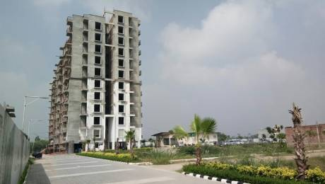 1500 sqft, 3 bhk Apartment in Mona City Sector 115 Mohali, Mohali at Rs. 39.0000 Lacs