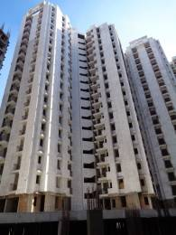 970 sqft, 2 bhk Apartment in  Spring Meadows Techzone 4, Greater Noida at Rs. 32.4950 Lacs