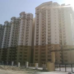 1060 sqft, 2 bhk Apartment in Eros Sampoornam Sector 2 Noida Extension, Greater Noida at Rs. 36.5700 Lacs