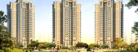 1675 sqft, 3 bhk Apartment in Capital Athena Sector 1 Noida Extension, Greater Noida at Rs. 56.9500 Lacs