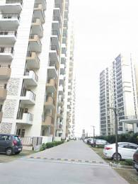 1085 sqft, 2 bhk Apartment in Express Zenith Sector 77, Noida at Rs. 54.2500 Lacs