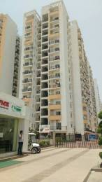 1590 sqft, 3 bhk Apartment in Panchsheel Greens Sector 16B Noida Extension, Greater Noida at Rs. 54.0000 Lacs