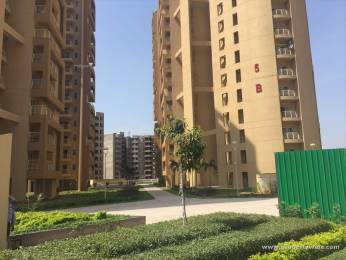 1850 sqft, 3 bhk Apartment in Suncity Parikrama Housing Complex Sector 20, Panchkula at Rs. 90.0000 Lacs