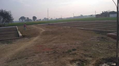 1000 sqft, Plot in Builder Tashi Bihta, Patna at Rs. 6.0100 Lacs