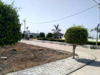 1265 sqft, Plot in Builder Soram park Nihalpur Mundi, Indore at Rs. 24.4145 Lacs