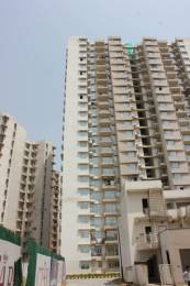 535 sqft, 1 bhk Apartment in Supertech Socrates Sector Omicron I Greater Noida, Greater Noida at Rs. 10000