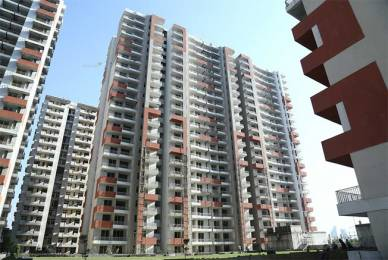 1050 sqft, 2 bhk Apartment in Ace Platinum Zeta 1 Zeta, Greater Noida at Rs. 15000